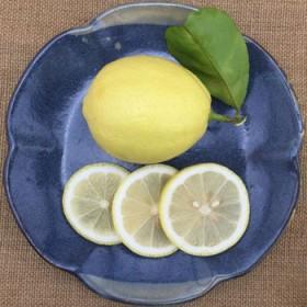 【限地区】新鲜黄柠檬水果2500g中大果5斤装