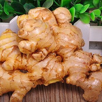 【包邮】生姜农家高原新鲜姜山区老姜小黄姜2000g冉龙小榨菜籽油价格图片