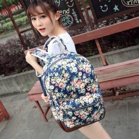 双肩包印花女韩版帆布中学生书包