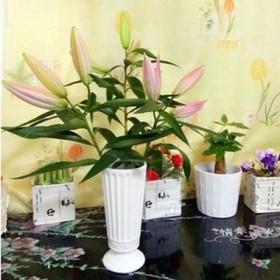 陶瓷家居装饰品欧式小摆件电视柜插花器创意干花瓶玄关