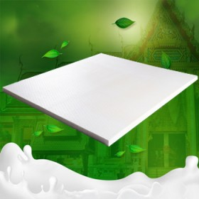 乳胶床垫 进口天然乳胶50X100 1公分