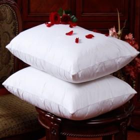 依尚富安娜羽绒枕芯白鹅绒记忆枕头护颈椎保健枕