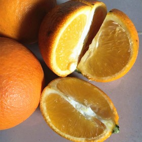 脐橙纯天然农产品新鲜橙子甜橙蜜香橙水果6斤桂林特产