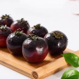 天然种植新鲜蔬菜 水果黑番茄 有机农家黑番茄西红柿