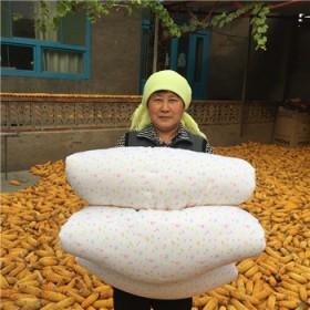 春秋被子棉花被子手工棉被加厚床垫垫被褥子定空调被子