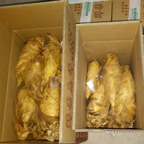新鲜冬笋5斤包邮