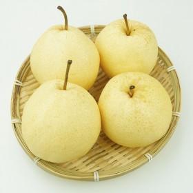 【限制地区】 5斤正宗砀山酥梨农家自产