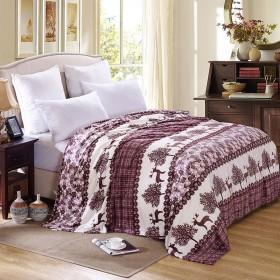 毛毯加厚保暖法莱绒毛毯床单绒毯单件双人毯子毛绒学生