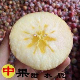 山西冰糖心丑苹果新鲜红富士净重8斤20个左右包邮