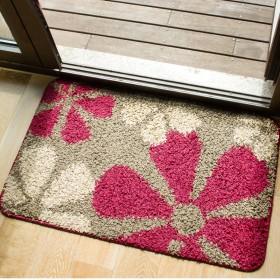 40x60客厅门垫进门脚垫卧室浴室防滑垫卫生间地垫