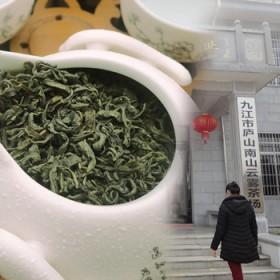 庐山云雾春茶新茶绿茶500克