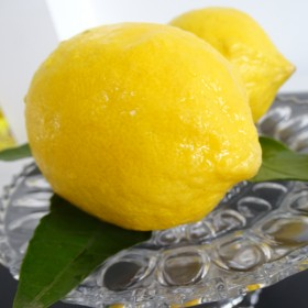 黄柠檬 1级果 现摘现发