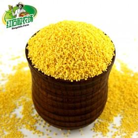 红石砬 2000g有机黄小米月子米