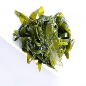 成山头当季裙带菜新鲜盐渍海带螺旋藻海带片海白菜昆布