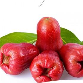 海南特产热带新鲜水果中国红 黑金刚莲雾2斤装