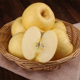 烟台奶油金富士苹果5斤装70-75mm非黄金帅