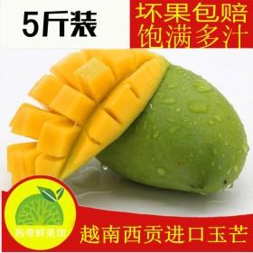 越南玉芒5斤包邮 单果200-400克