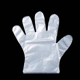 500只装一次性手套加厚PE塑料透明手套一袋宗师