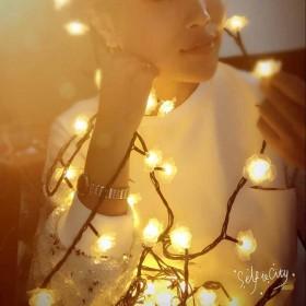求婚神器 玫瑰灯自拍LED彩灯闪灯串灯装饰黑线婚庆