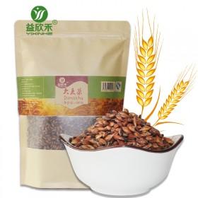 大麦茶500克/袋