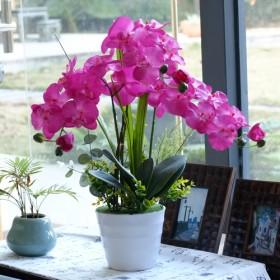 蝴蝶兰仿真花套装 客厅装饰花 整体花艺摆件 高仿真