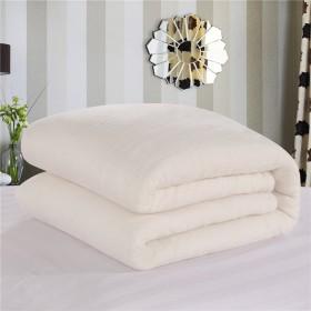 2斤夏凉被薄被被芯 纯棉花网纱