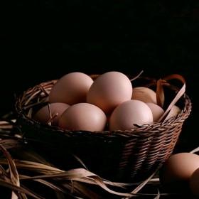 【君新农业】土鸡蛋【30】枚四川农家散养纯天然草/