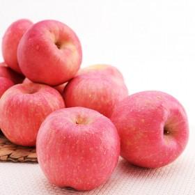 【红富士5斤】静宁冰糖心苹果水果包邮新鲜非蛇果烟台