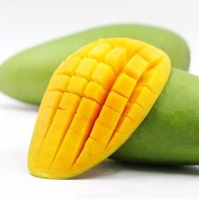 越南玉芒青芒5斤热带水果芒果海南大青芒玉芒包邮