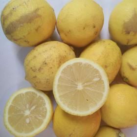限制区【4斤】柠檬二级果维C榨汁水果黄柠檬