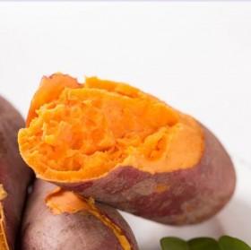 5斤装新鲜红薯红心地瓜现挖红心红薯