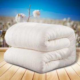 新疆棉花被子空调被芯单人夏季薄被子全棉被芯