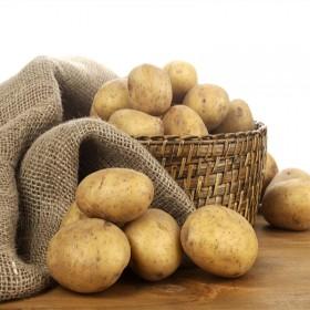 恩施有机土豆非转基因洋芋马铃薯买2斤送1斤包邮