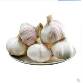 【限地区】2017年新鲜大蒜 新鲜蔬菜厨房食材