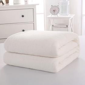 100%新疆棉花被夏凉被芯 2斤新疆长绒棉加密网纱