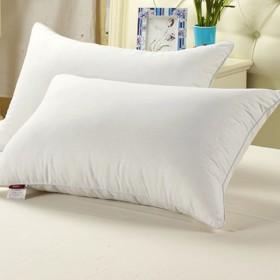 羽丝绒枕头单人学生枕芯单个装起来好安逸哦