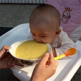 【拍三件】农家小米宝宝米月子米2400克包邮