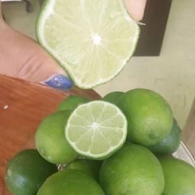 【3斤】包邮泰国新鲜青柠檬皮薄无籽汁多低价供餐饮奶