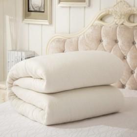 8斤 手工棉絮棉被芯学生宿舍垫被棉花被子单人垫絮