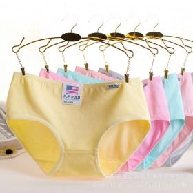 6条装 女式内裤厂家直销全棉三角糖果色内裤 纯棉内
