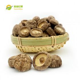 秦岭香菇 250g干香菇肉厚剪根农家特产干香菇