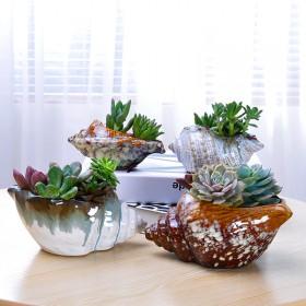多肉花盆肉肉植物石头花盆陶瓷创意室内绿植桌面小盆栽