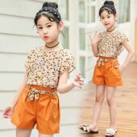 新款甜美可爱童装女童套装舒适大方儿童短袖两件套潮