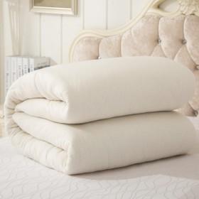 棉花被棉絮床垫1.8m褥子双人被芯单人学生宿舍被子