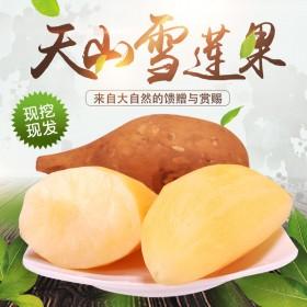 【10斤】天山雪莲果云南特产红泥沙新鲜水果脆甜水果