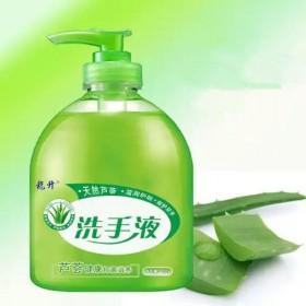 500ml芦荟清香型洗手液