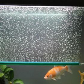 大鱼缸水族箱造景装饰氧气增氧泵气石气泡条帘散条沙头
