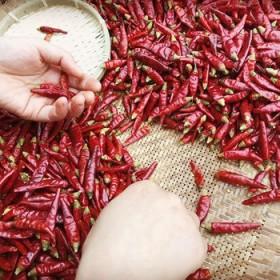 四川特产朝天椒小米辣干辣椒一袋装120g厨房调料