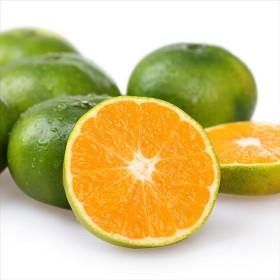 5斤蜜桔甜橘子甜桔子水果新鲜薄皮