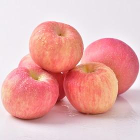 烟台苹果当季水果新鲜苹果农家果园栖霞红富士5斤包邮